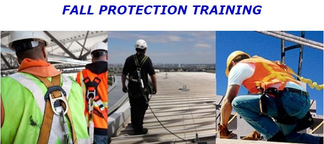ARCA Fall Protection
